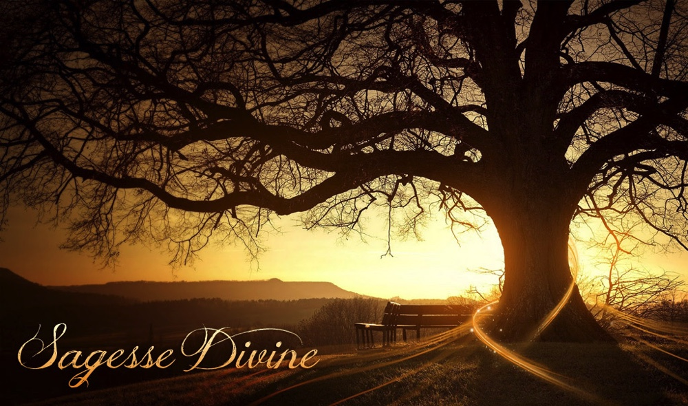 Sagesse-Divine