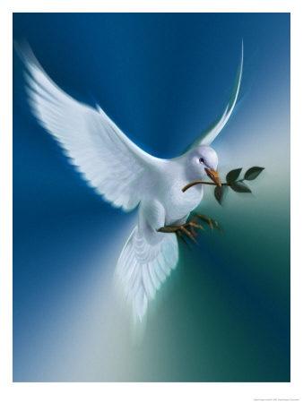 la-colombe-de-la-paix