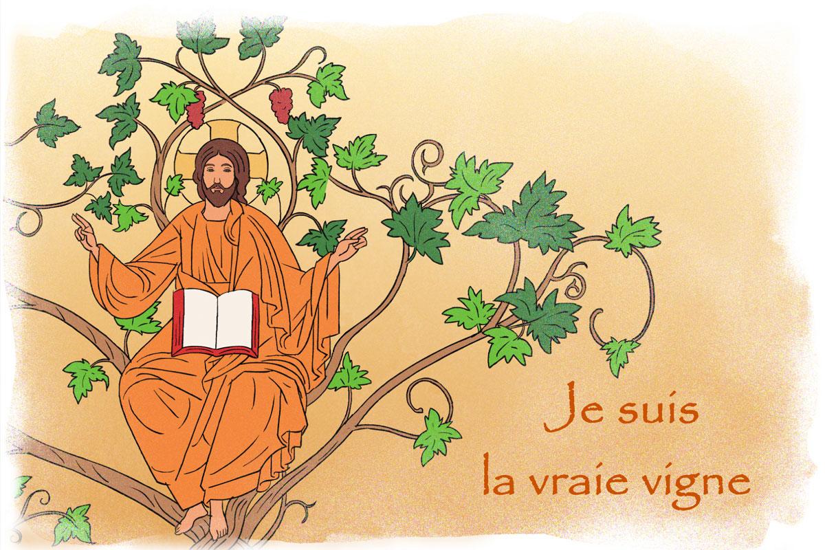jesus-vraie-vigne.jpg.html