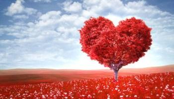 love-of-god-tree-heart